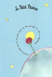 C'était un jardin fleuri de roses... c-est-le-temps-que-tu-as-perdu-pour-ta-rose-qui-fait-ta-rose-si-importante-le-petit-prince3-202x300
